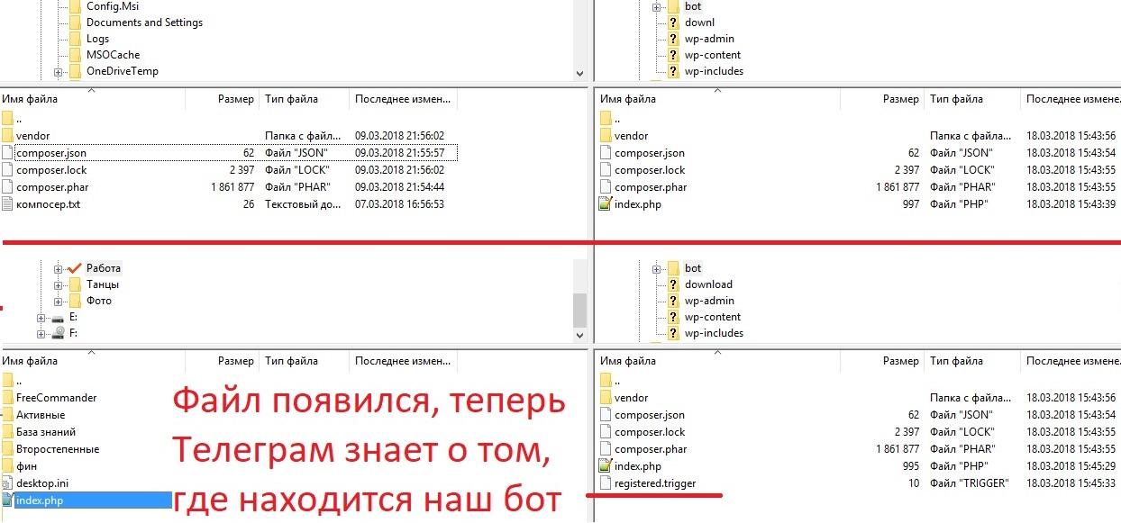 Регистрация Telegram-бота